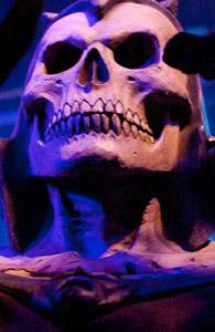 dr_skull